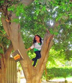 Mariam, Egypt