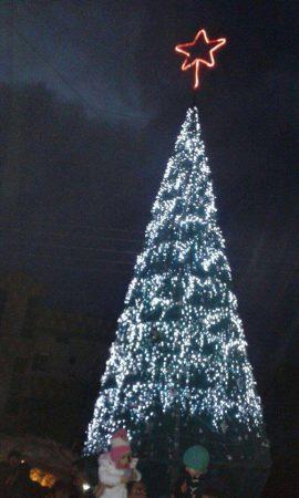 A Wish for Christmas by Enana Hermez,Syria
