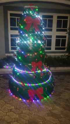 christmas tree nigeria