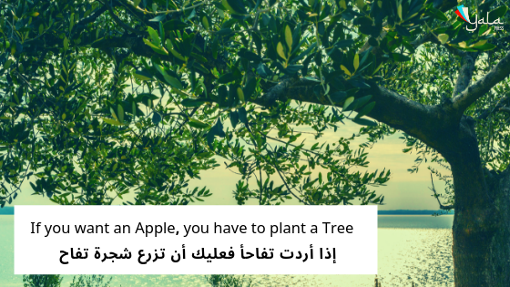 If you want an Apple, you have to plant a Tree  – إذا أردت تفاحأ فعليك أن تزرع شجرة تفاح